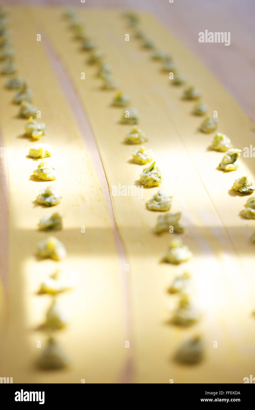 Rows of filling on top of homemade sheets of pasta in dappled sunlight. - Stock Image