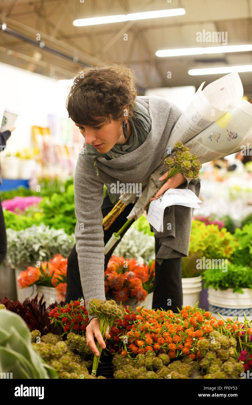 A florist chooses bundles of flowers for sale at a warehouse flower mart. - Stock Image