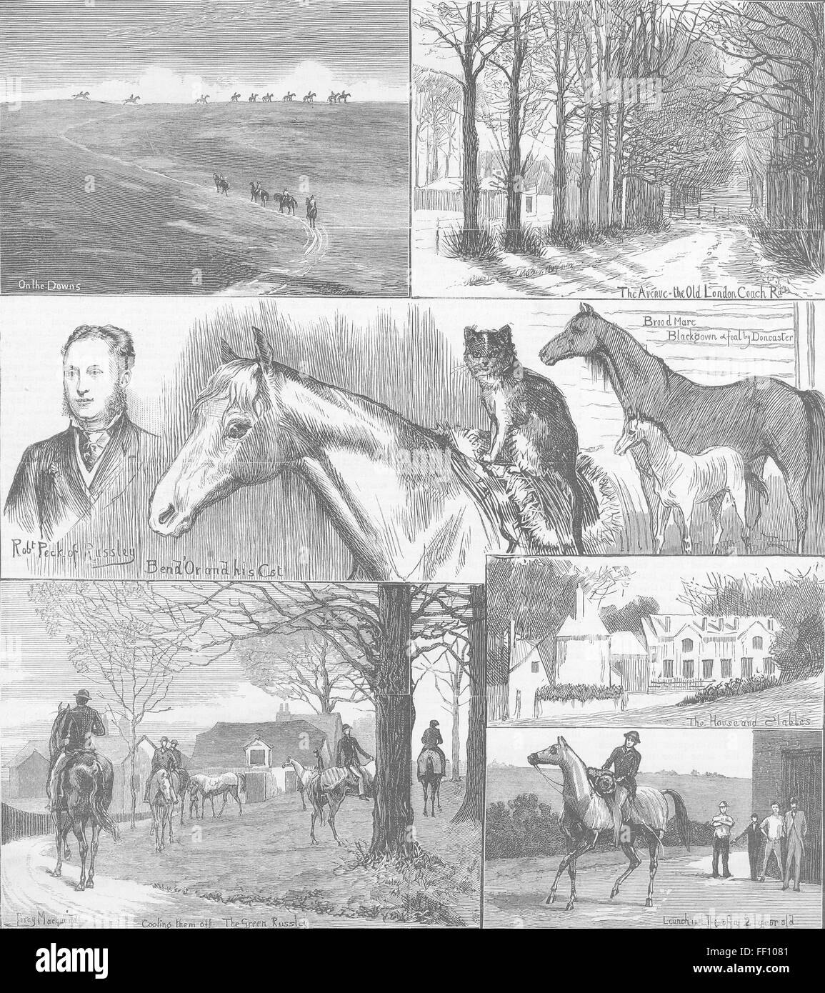 WILTS A day at the Russley Stables 1881. The Graphic - Stock Image