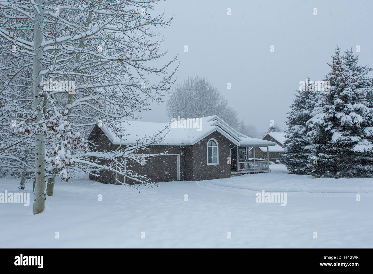House and snowy front yard Stock Photo