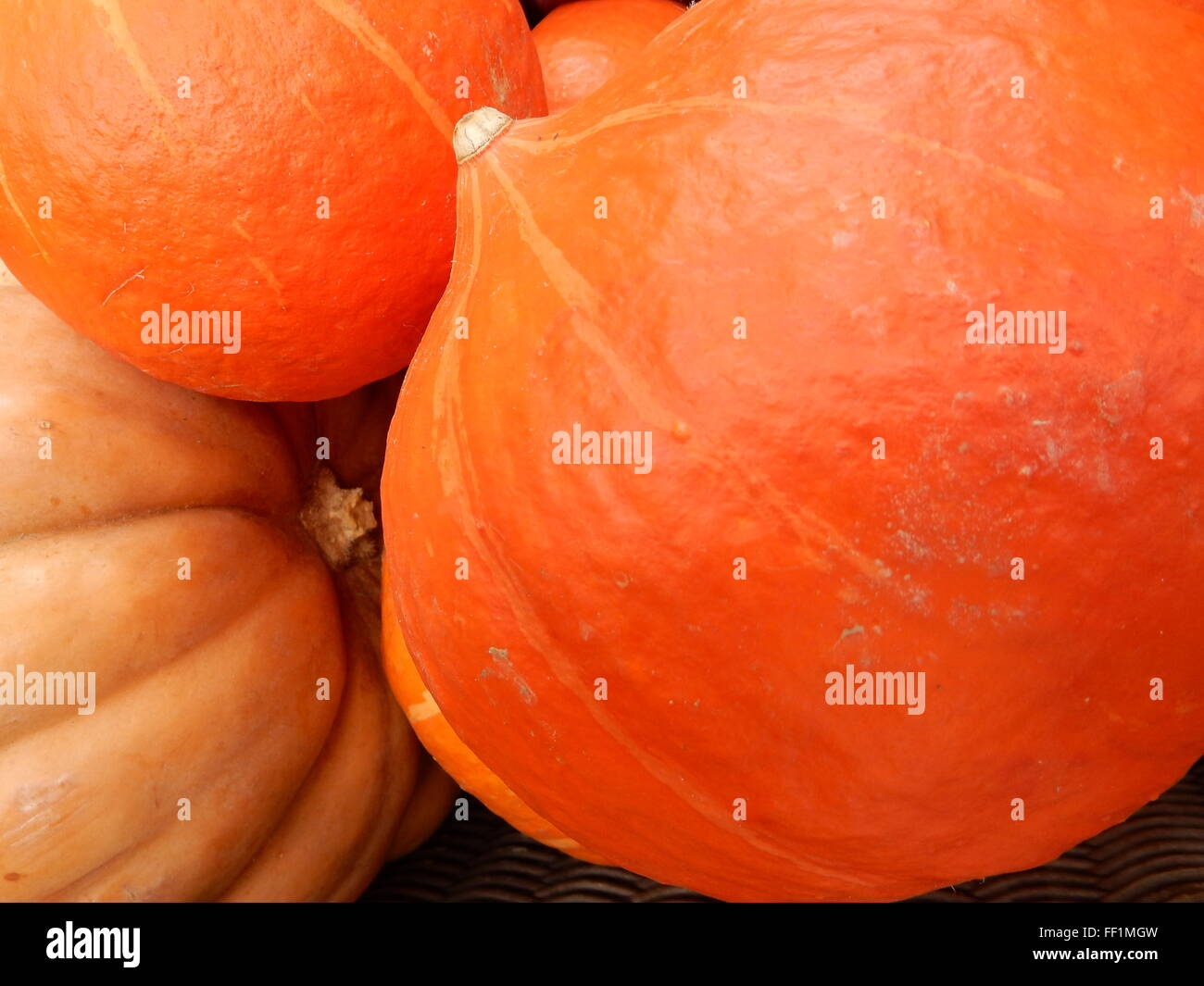 pumpkins on the market place - Stock Image