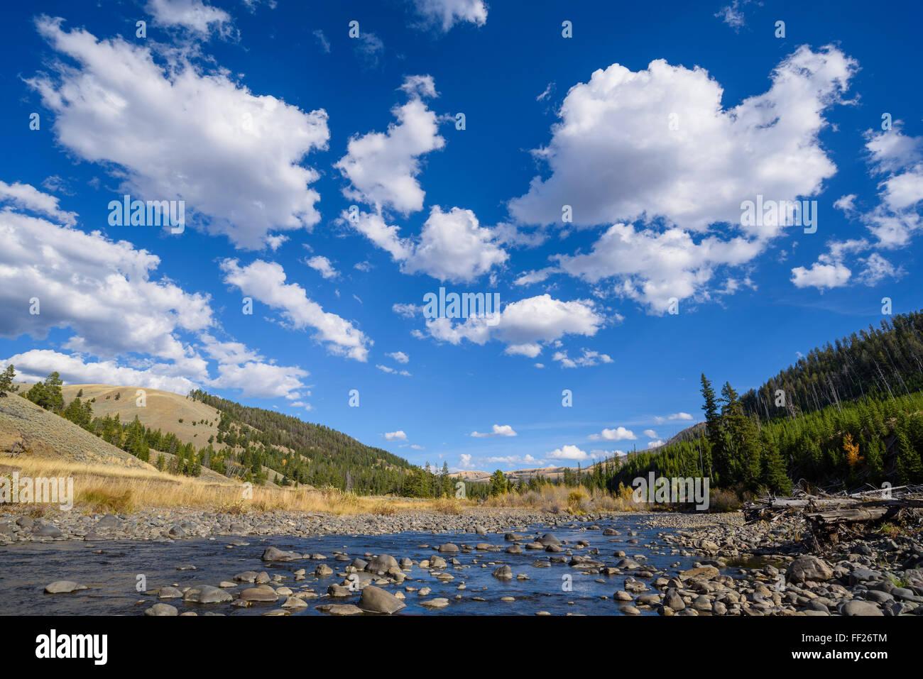 Cache Creek, YeRMRMowstone NationaRM Park, UNESCO WorRMd Heritage Site, Wyoming, United States of America, North - Stock Image