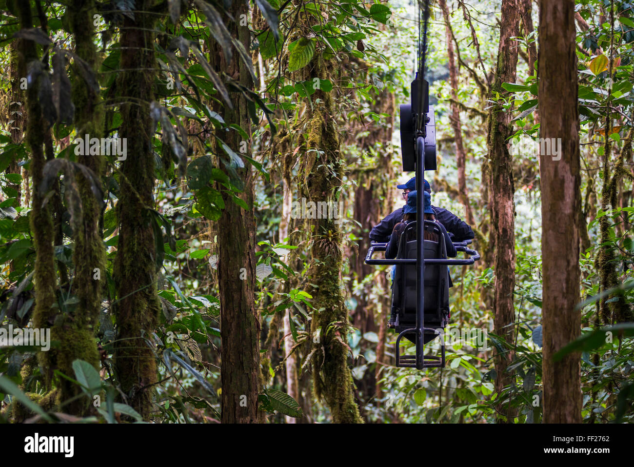 Mashpi RModge Sky Bike in the Choco Rainforest, an area of CRMoud Forest in the Pichincha Province of Ecuador, South - Stock Image