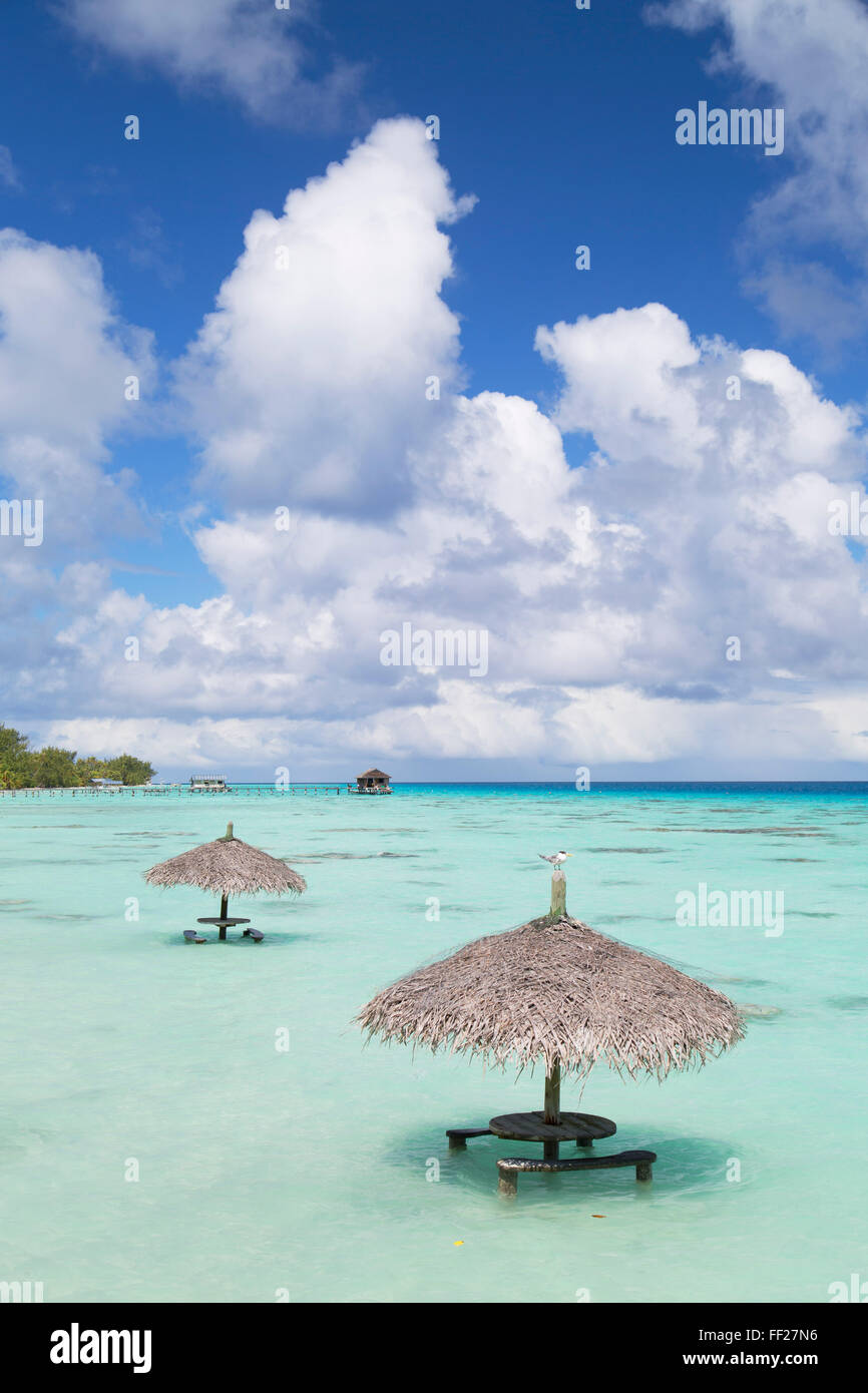 ParasoRMs in RMagoon, Fakarava, Tuamotu IsRMands, French PoRMynesia, South Pacific, Pacific - Stock Image