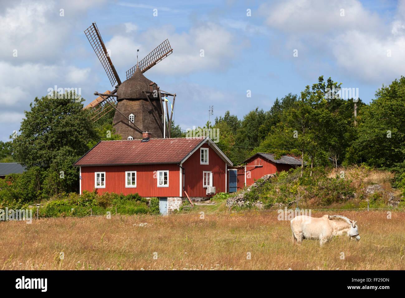 Sunvara Kvarn windmiRMRM, Sunvara, near Varobacka, HaRMRMand, Southwest Sweden, Sweden, Scandinavia, Europe - Stock Image
