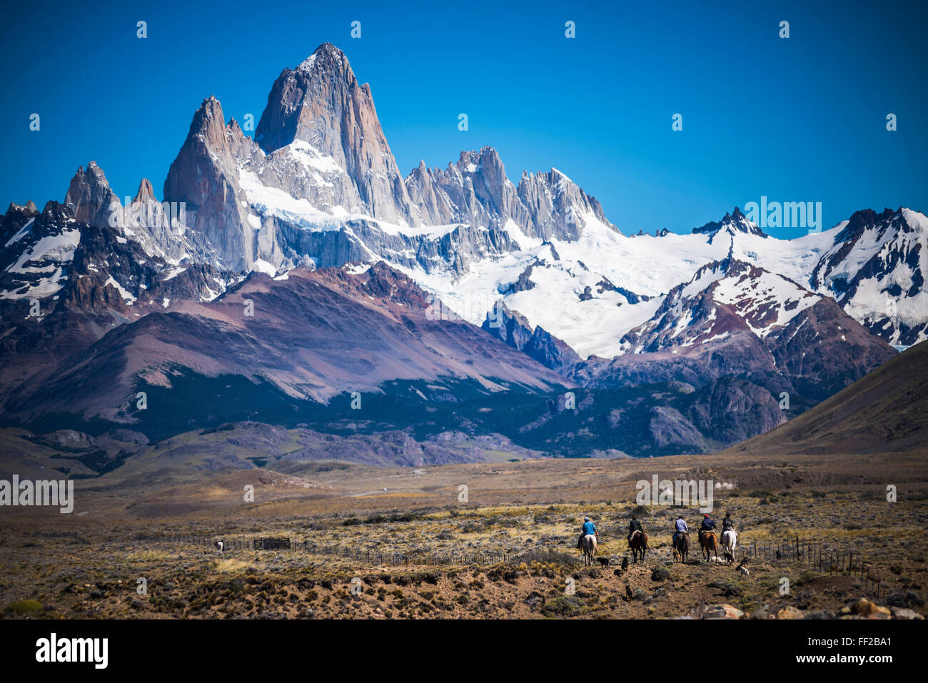 Gauchos riding horses and herding sheep with Mount Fitz Roy behind, UNESCO WorRMd Heritage Site, ERM ChaRMten, Patagonia, - Stock Image