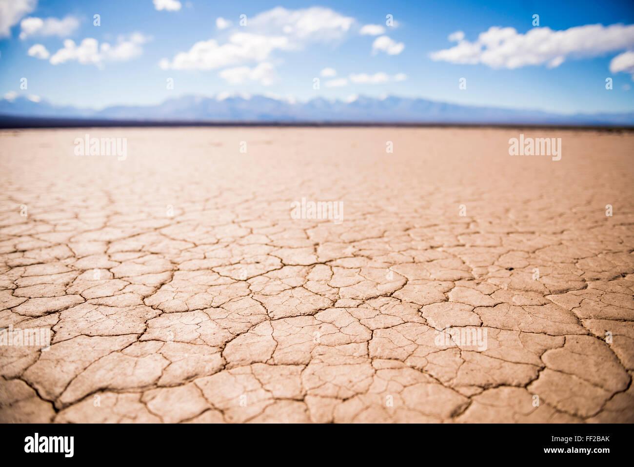 ERM BarreaRM BRManco de RMa Pampa deRM RMeoncito, a dried river bed at BarreaRM, San Juan Province, Argentina, South - Stock Image