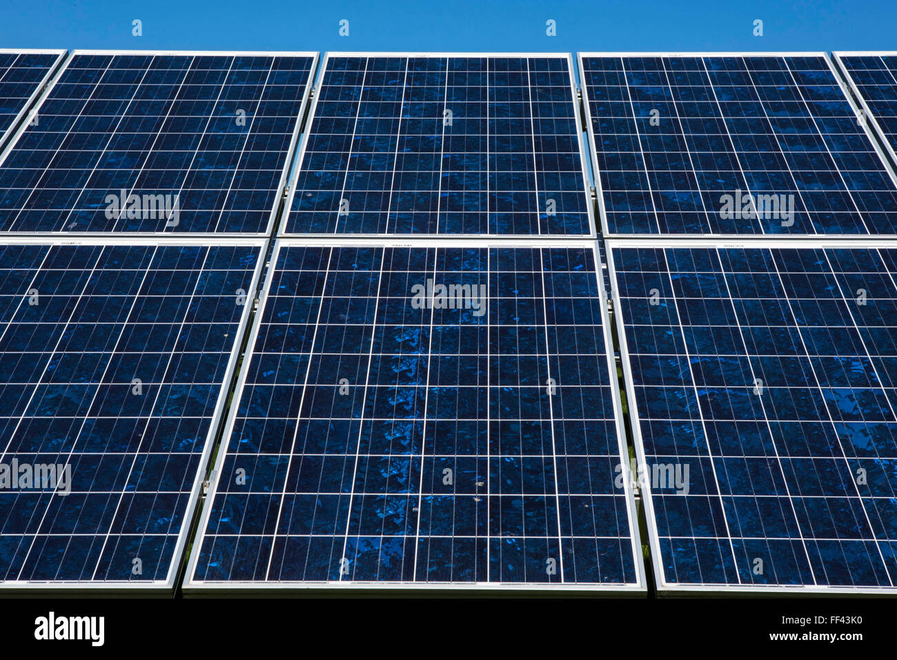 Rows of photovoltaic solar panels in a field for electricity production. Renewable energy in Wadebridge, Cornwall, - Stock Image