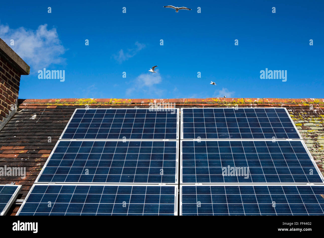 Solar Panels Roof School Stock Photos Amp Solar Panels Roof