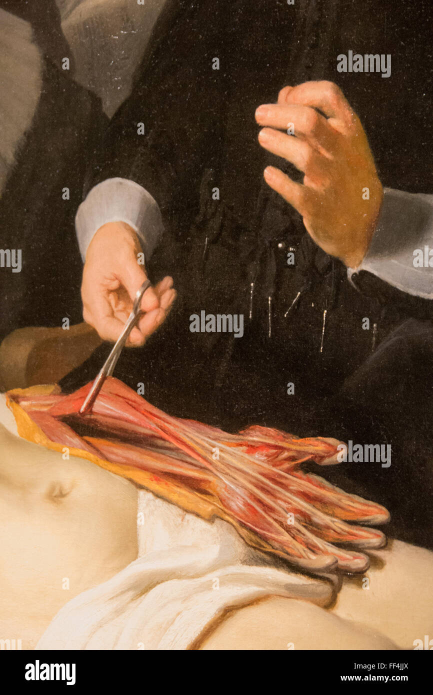 detail of anatomy lesson dr tulp rembrandt Stock Photo: 95374130 - Alamy