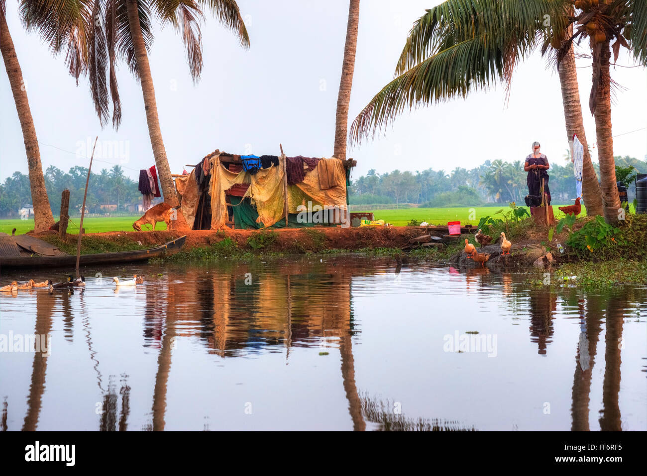 rural shack in Alappuzha, Backwaters, Kerala, South India, Asia - Stock Image