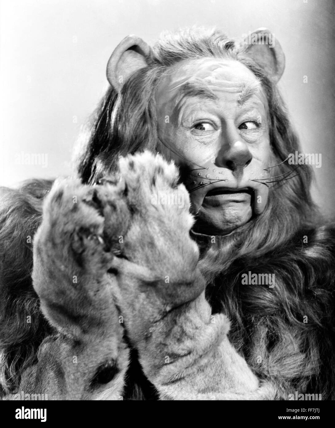 Wizard Of Oz 1939 Nbert Lahr As The Cowardly Lion In Mgm Production