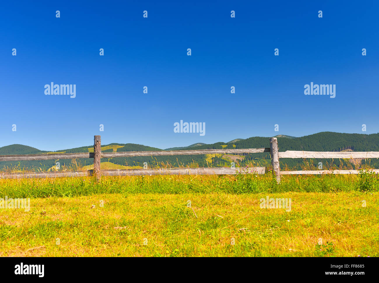 Alpine pasture farming in summer mountains. - Stock Image