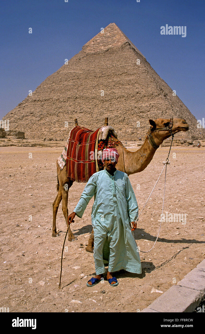 Camel driver and pyramid of Khafre, Giza, Cairo, Egypt, Africa - Stock Image