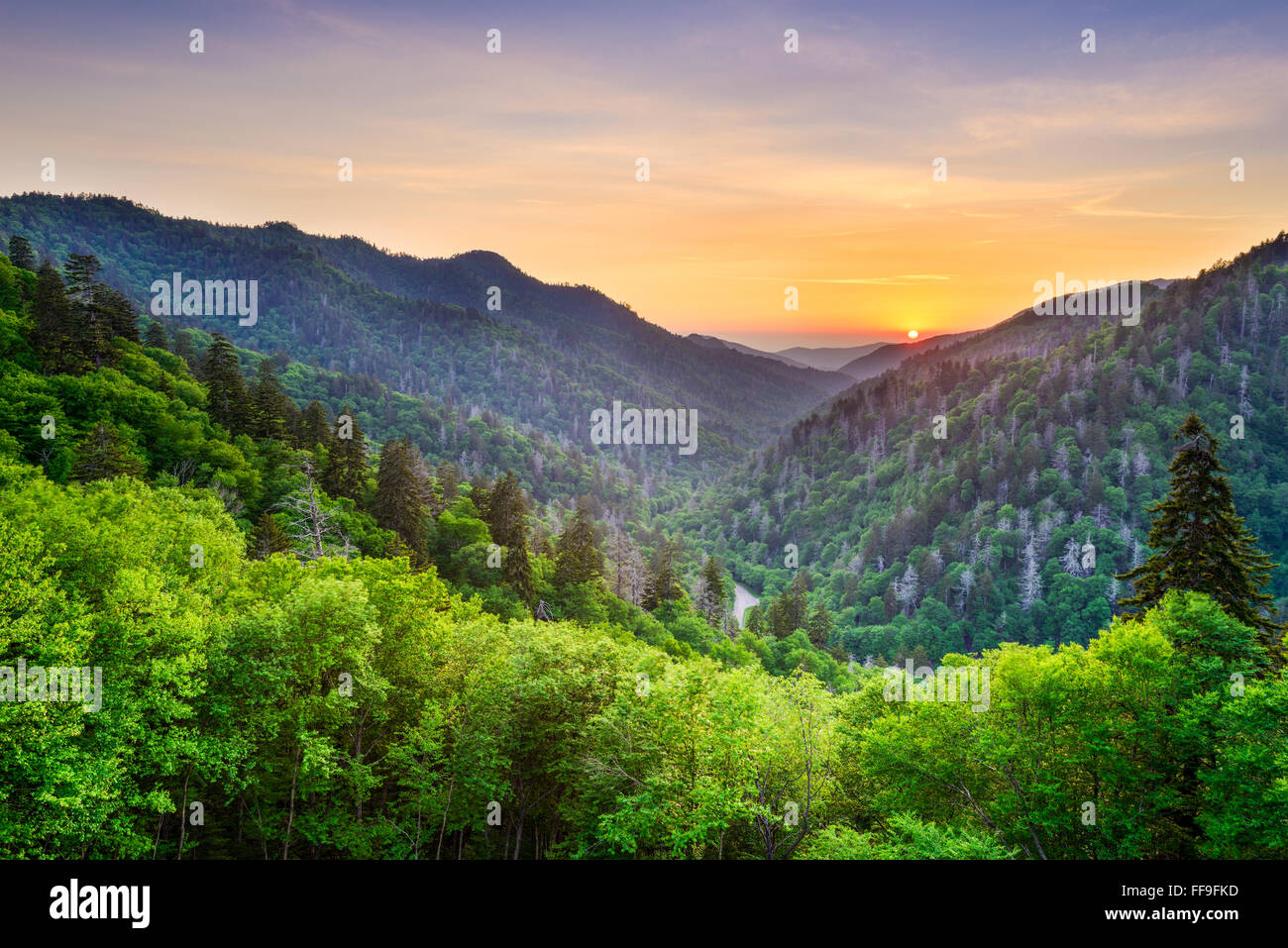 Newfound Gap in the Smoky Mountains, Tennessee, USA. - Stock Image