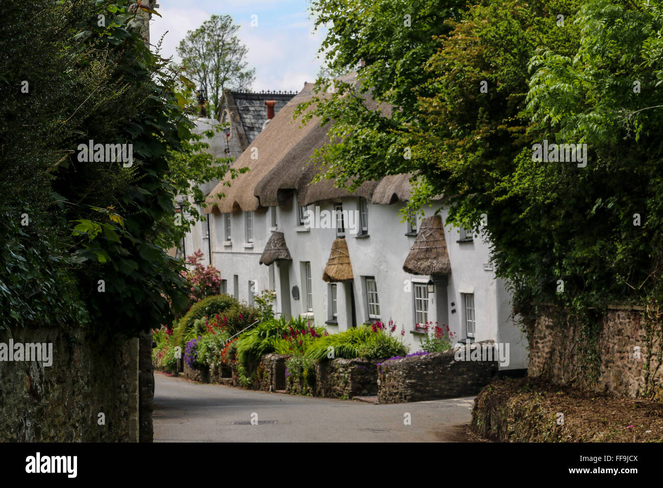 Row of thatch cottages, Kingston, Devon, England, UK - Stock Image