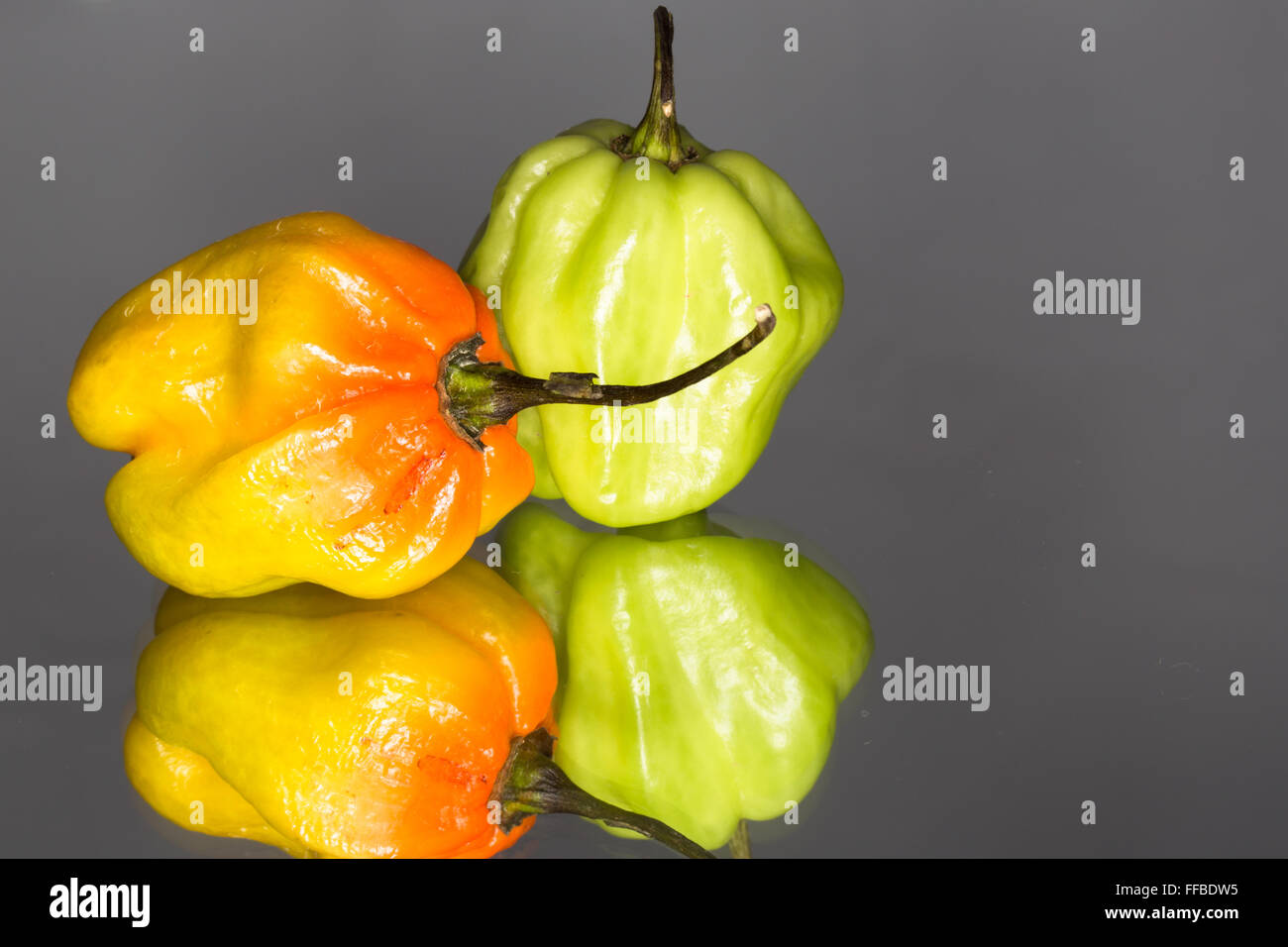 A macro image of two Golden Habanero Chili Peppers reflected on a mirrored surface - Stock Image