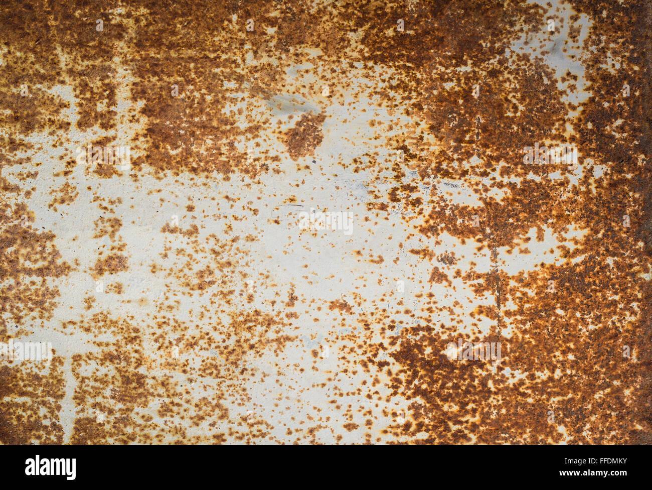 metal panel texture. Rusty Metal Panel Texture L