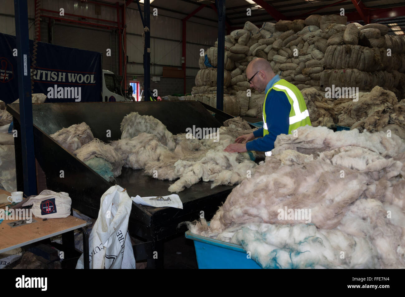 A British wool sorter grading and sorting wool. - Stock Image