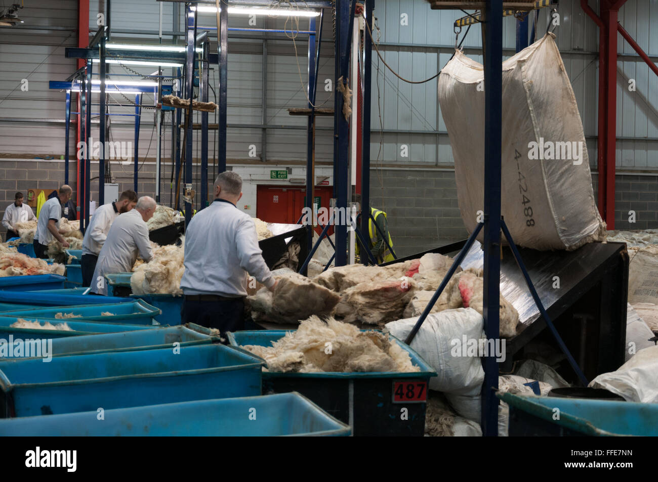 Wool being sorted and graded in Bradford England - Stock Image