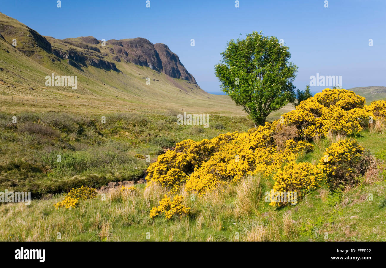 Carbost, Isle of Skye, Highland, Scotland. View along the Talisker Valley to the peak of Preshal More. Stock Photo