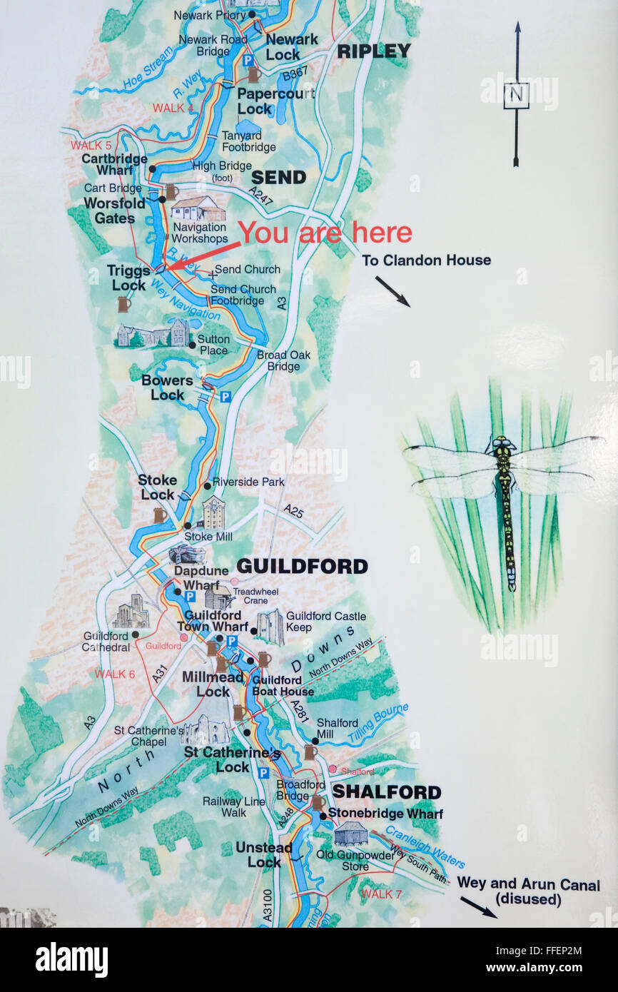 River Wey Map Send, Guildford, Surrey, England. Pictorial map of the River Wey  River Wey Map