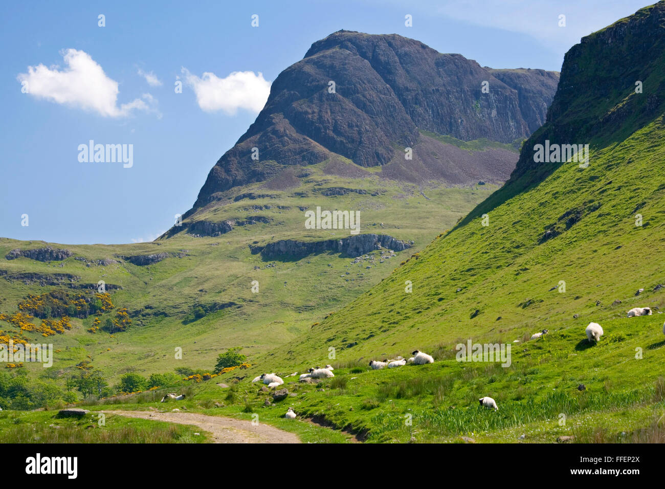 Carbost, Isle of Skye, Highland, Scotland. View along path through the Talisker Valley to the peak of Preshal More. Stock Photo