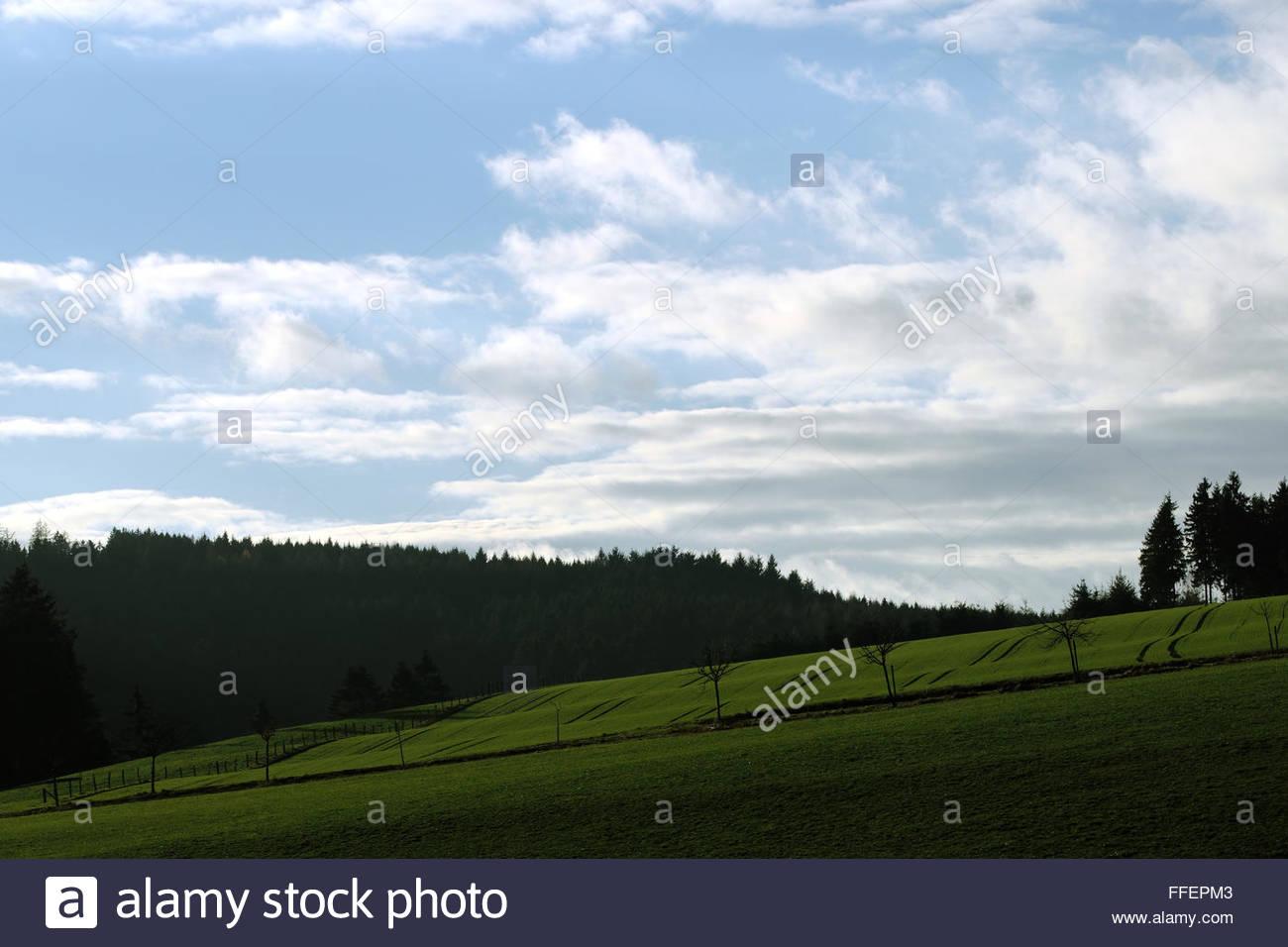Idyll landscape - Stock Image