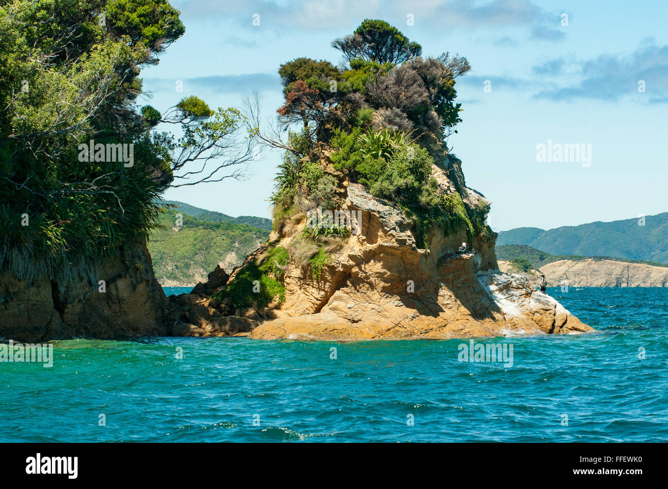 Headland near Resolution Bay, Marlborough Sound, New Zealand - Stock Image