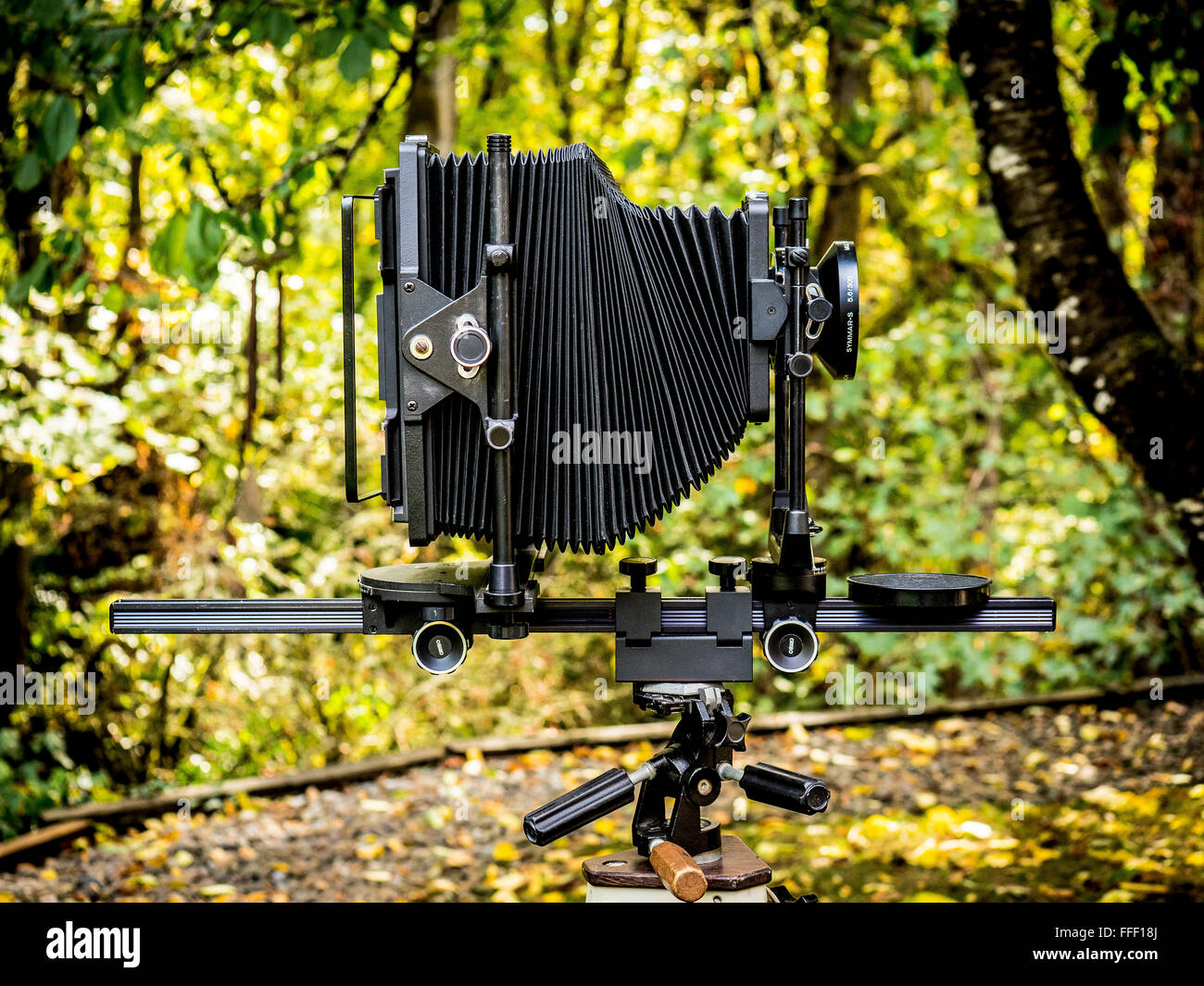 A large format view camera against a green nature background - Stock Image