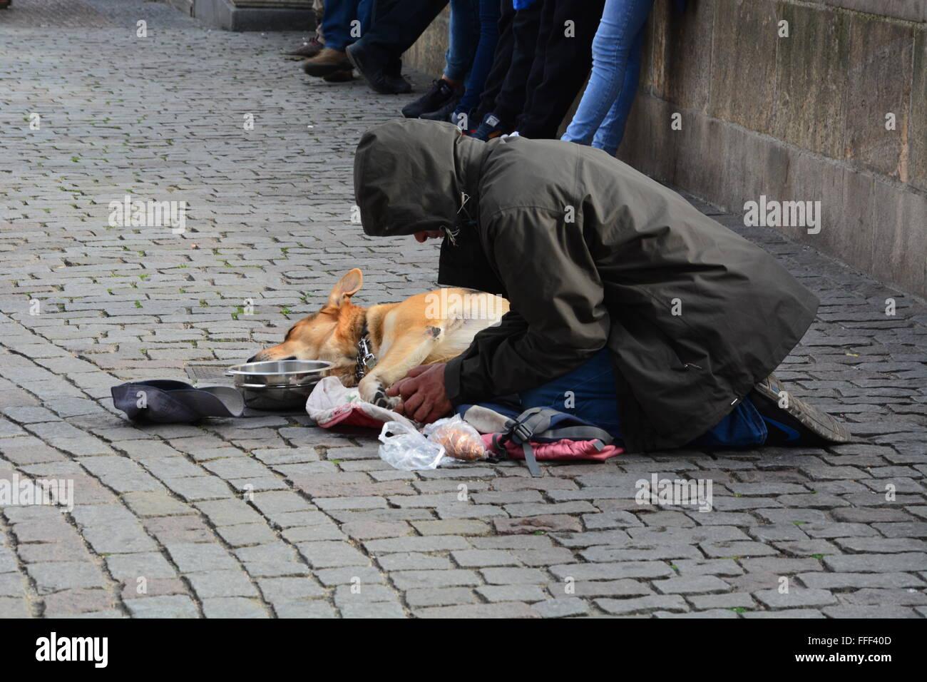Street beggar with dog on the Charles Bridge in Prague, Czech Republic. - Stock Image