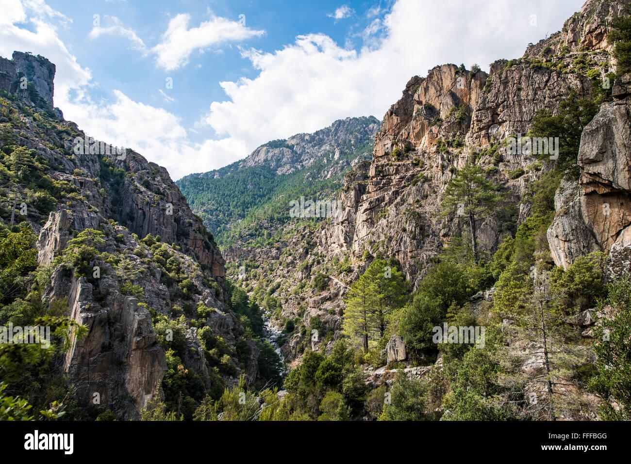 Tavignano river valley, rocky landscape, Corte, Haute-Corse, Corsica, France Stock Photo