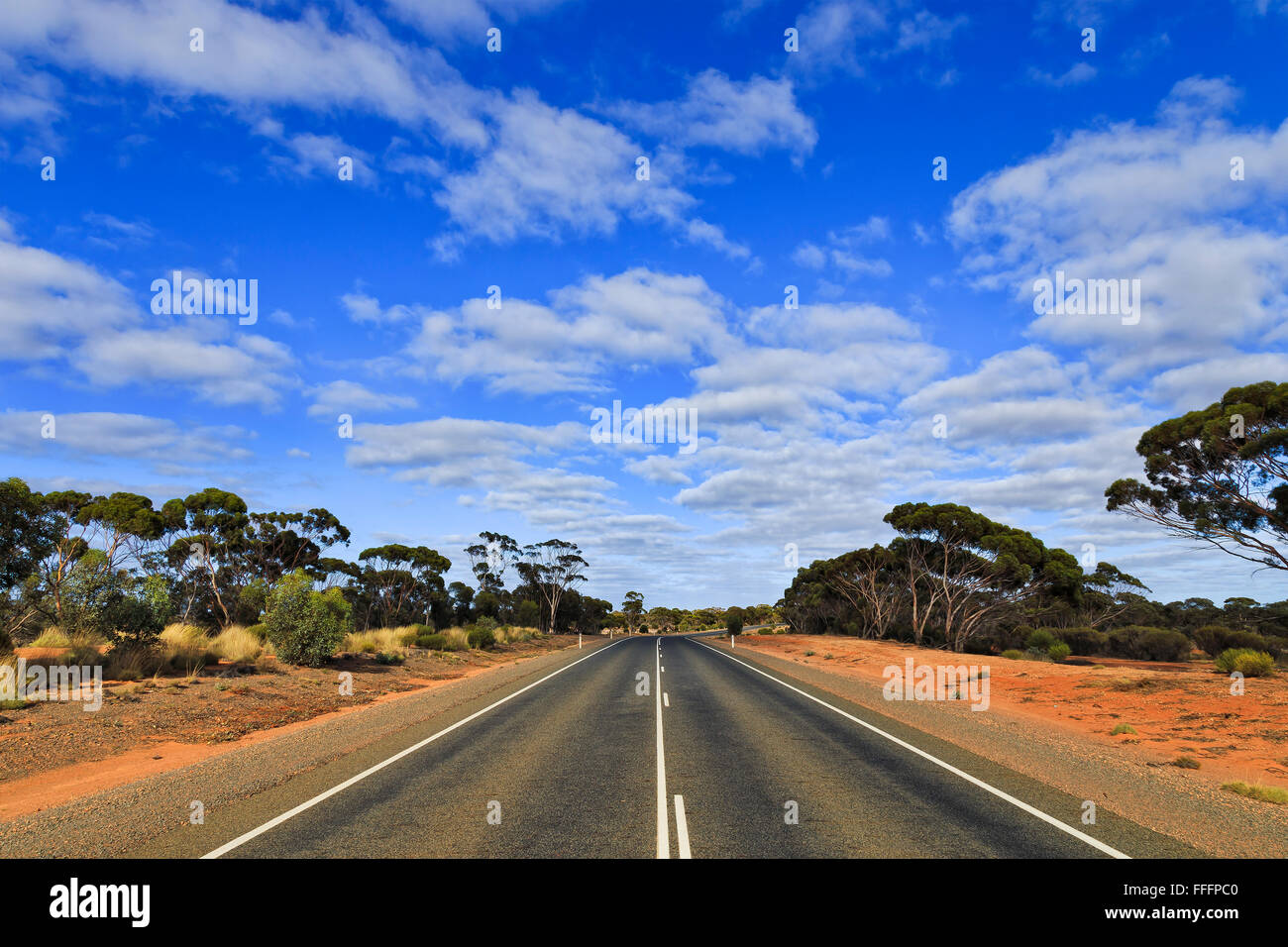 empty wide tarmac highway in Western Australia diminishing at the horizon under blue sky - Stock Image