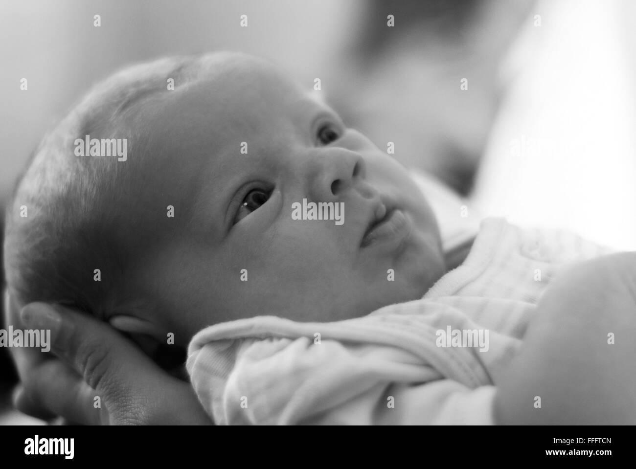new born baby - Stock Image
