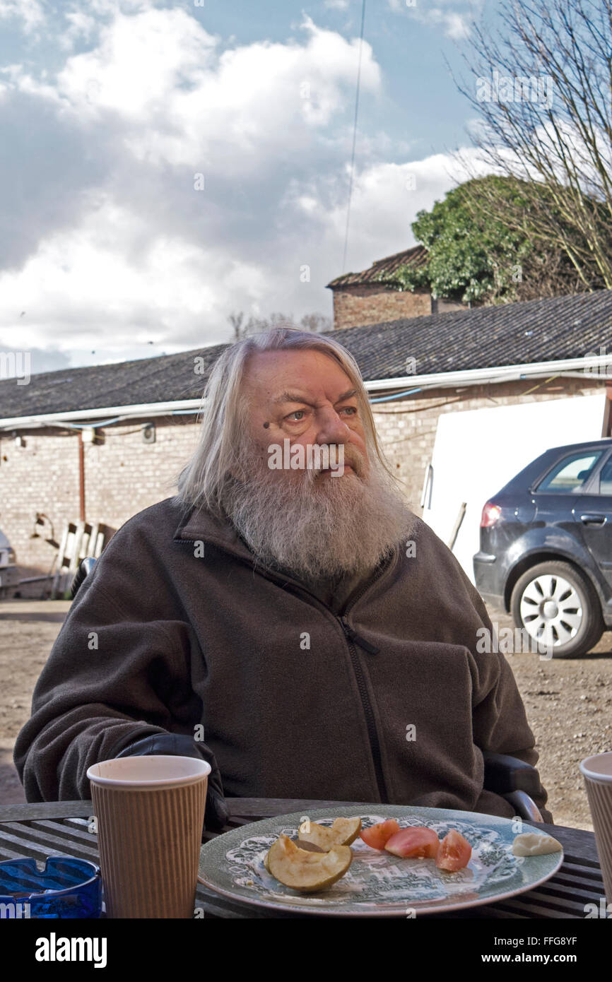 Robert Wyatt, musician in Louth, Lincolnshire. - Stock Image