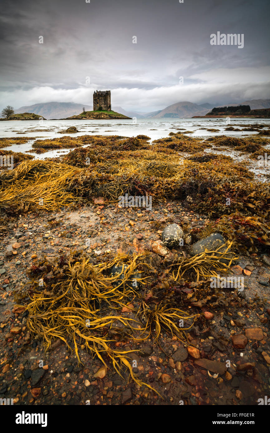 Castle Stalker in Argyll and Bute, Scotland - Stock Image