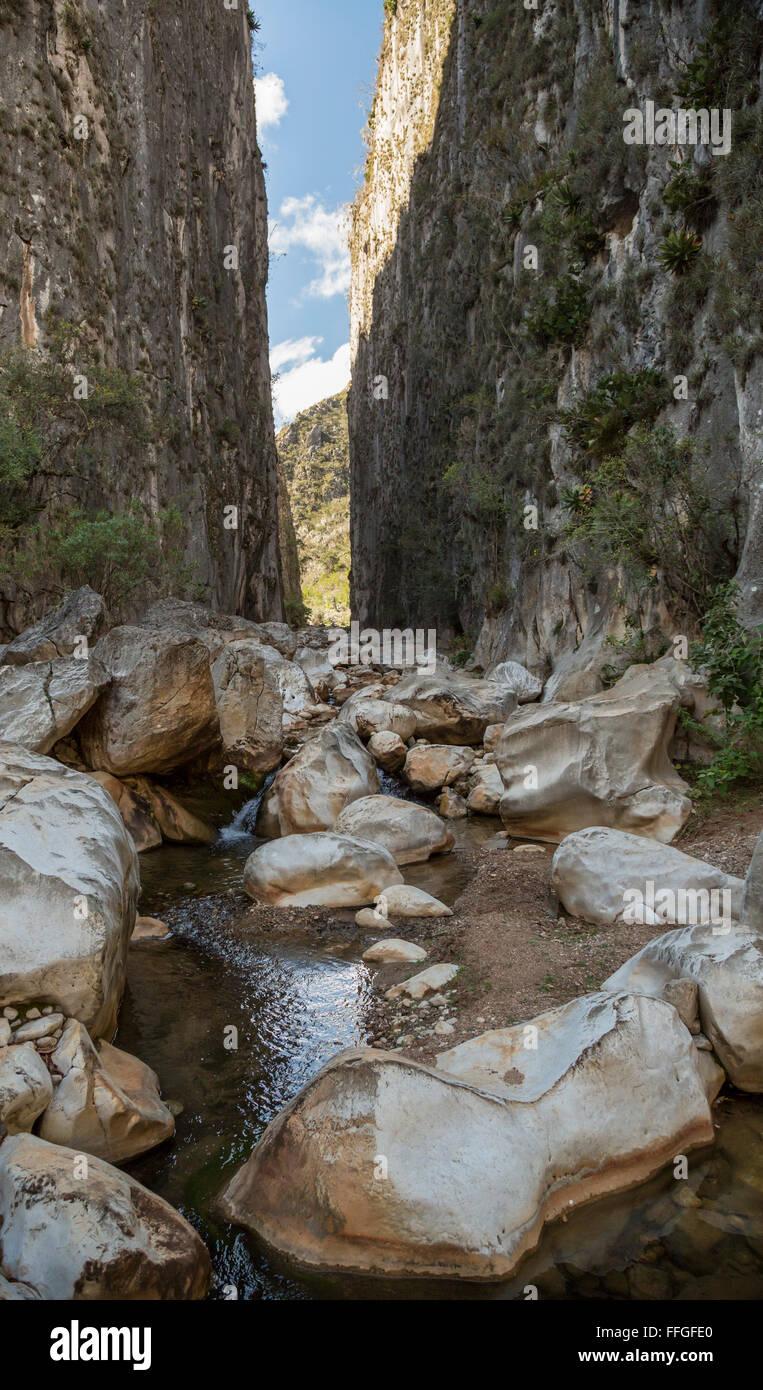 Santiago Apoala, Oaxaca, Mexico - A stream runs through a canyon near the village of Apoala, a small mountain town. - Stock Image