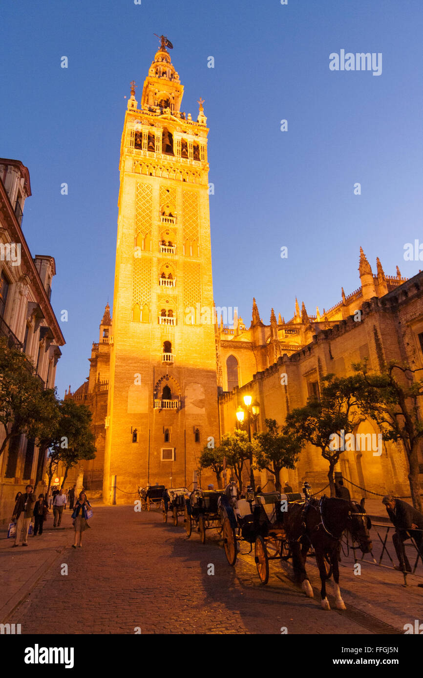 The Giralda bell tower by night. Seville, Andalusia, Spain - Stock Image
