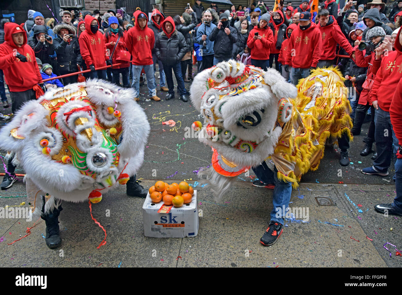 Dragon dancers dancing for prosperity on Doyers Street in NYC Chinatown at the 2016 Lunar New Year's Day Parade. - Stock Image
