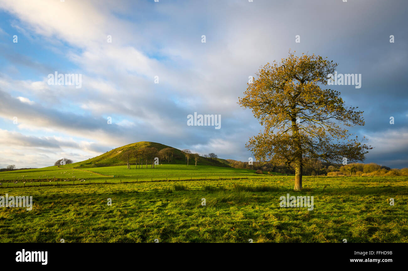 A view of Summerhouse Hill on the Kent Downs, part of the wider North Downs in the south of England. - Stock Image