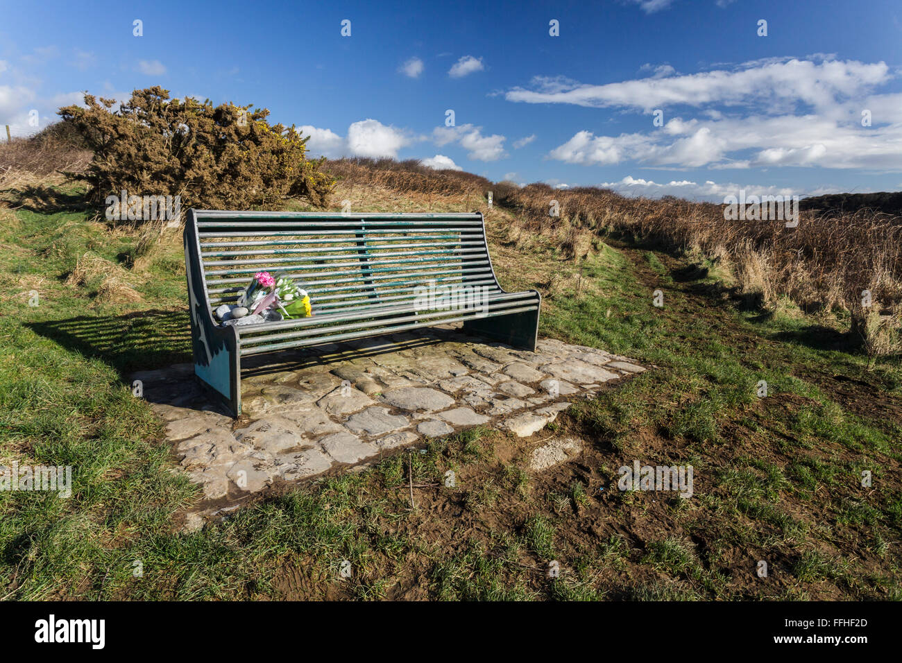 An empty bench with fresh cultivated flowers left on the seat. The bench is on the headland and looks out to sea. - Stock Image