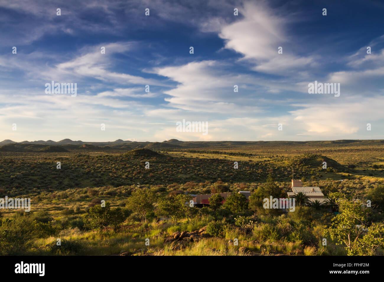 Grassland of Namibia in the rain season near Windhoek - Stock Image