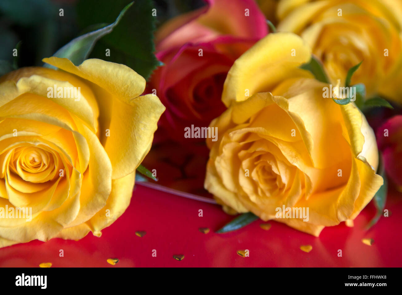 Rose Gold Green Stock Photos Rose Gold Green Stock Images Alamy