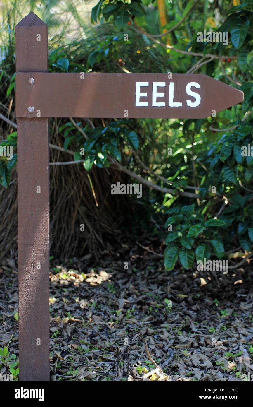 Eel Sign Post Stock Photo