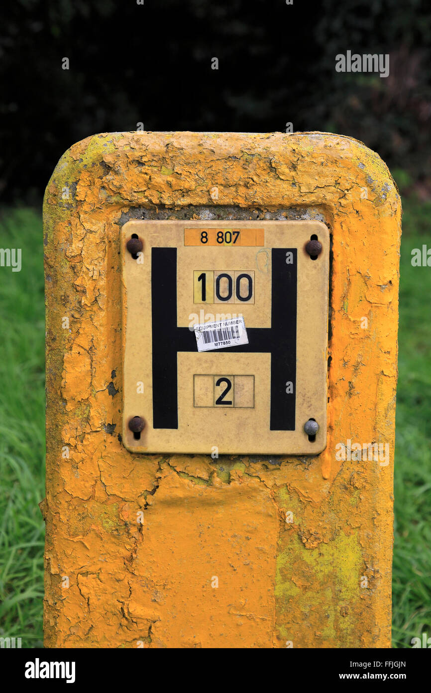 Capital letter H on yellow post identifying location of water hydrant, Suffolk, England, UK - Stock Image