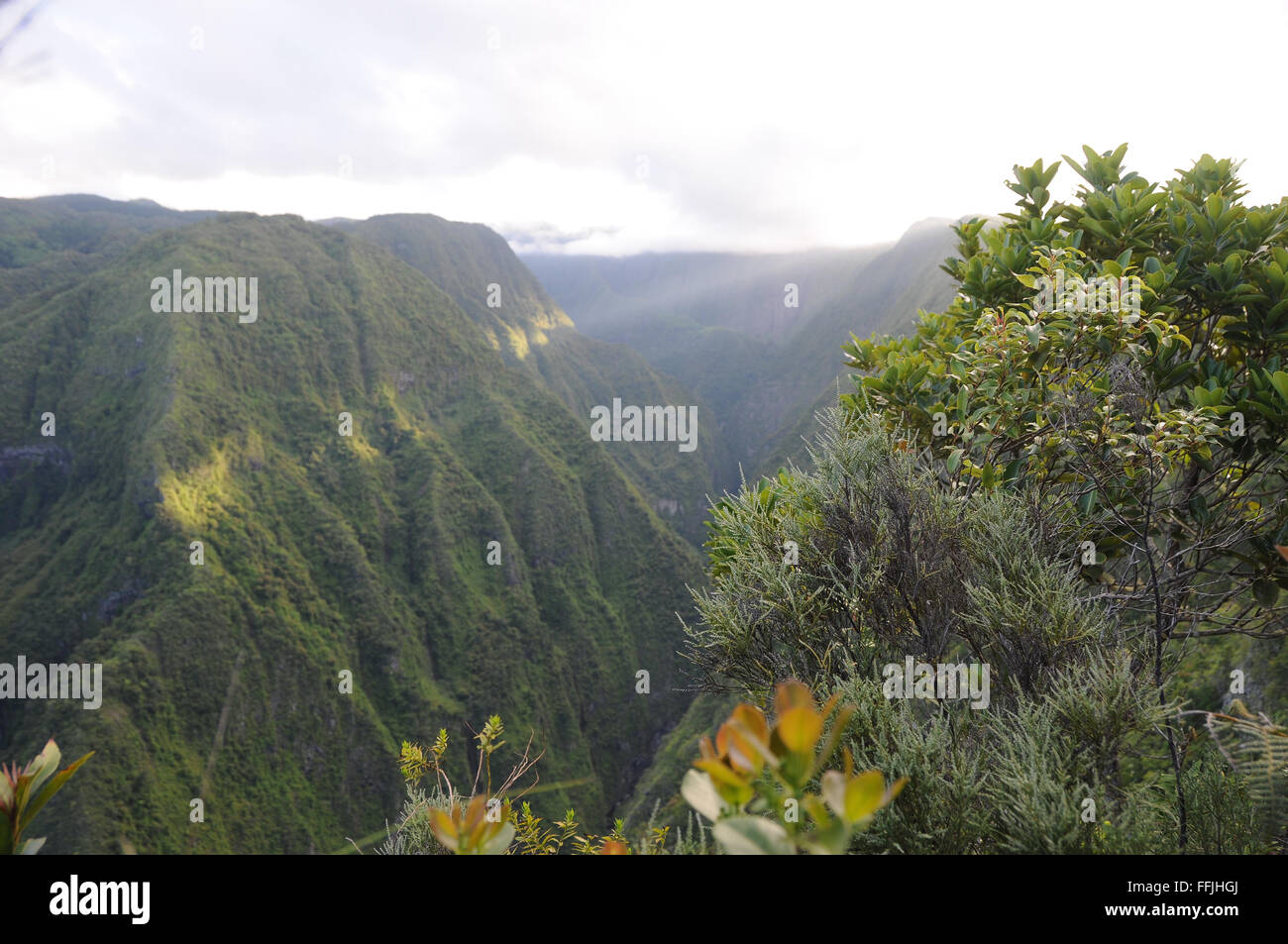 La Fenetre. Viewpoint over a ravine in Reunion. - Stock Image