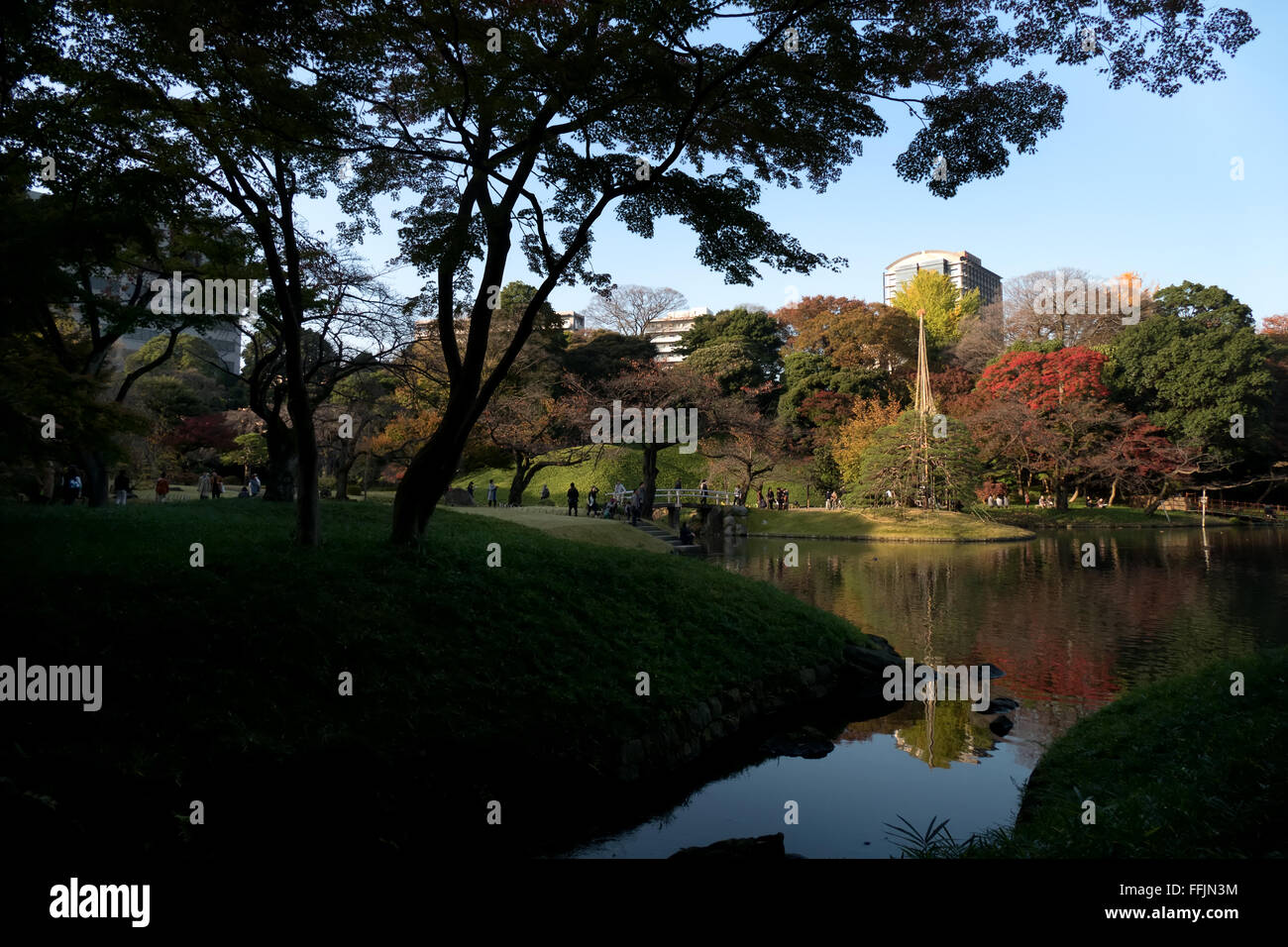 Koishikawa Korakuen Garden, Tokyo, Japan. City park in fall season, autumn foliage on trees. Japanese culture, nature, Stock Photo