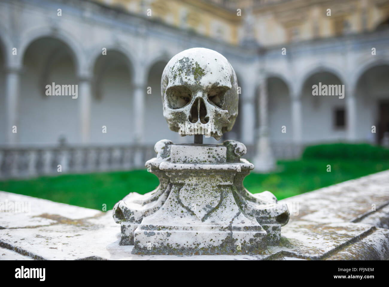 Skull death symbol, the corner of a Carthusian cemetery ornamented with a stone skull in the monastery of Certosa - Stock Image