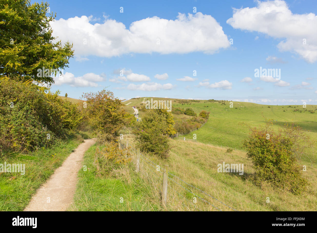Path to Ivinghoe Beacon Chiltern Hills Buckinghamshire England UK English countryside blue sky and clouds - Stock Image