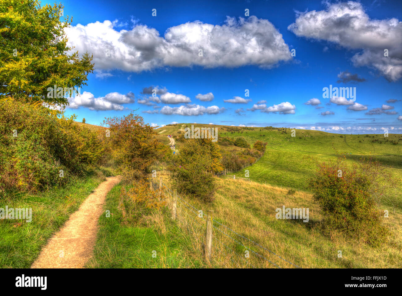 Path to Ivinghoe Beacon Chiltern Hills Buckinghamshire England UK English country view near Dunstable Bedfordshire - Stock Image